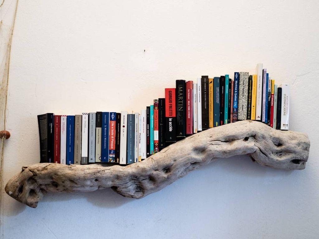 driftwood bookshelf snake