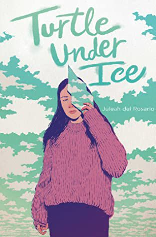 Turtle under ice - books in verse - sisterhood