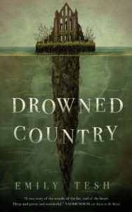 Cover of Drowned Country by Tesh