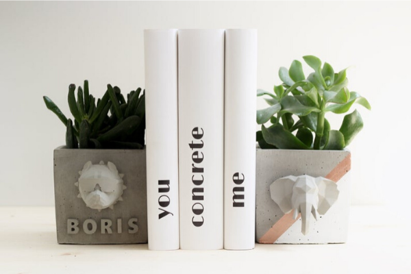 square concrete planter bookends with animal heads