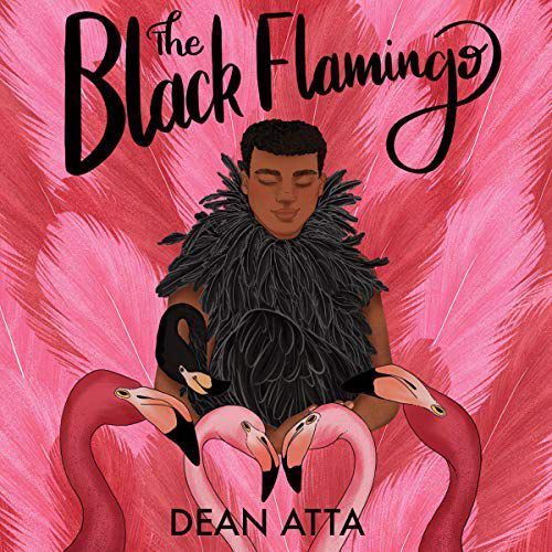 The Black Flamingo by Dean Atta - sexuality