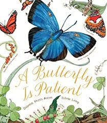 A Butterfly is Patient book cover