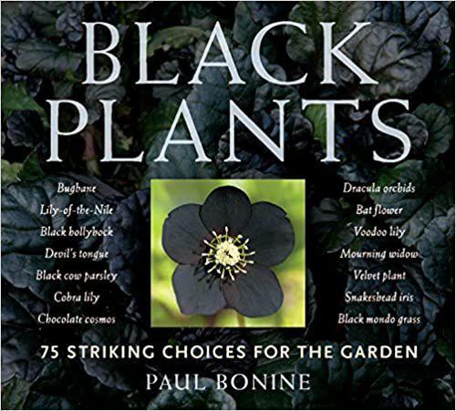 black plants.jpg.optimal