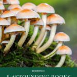 books about mushrooms