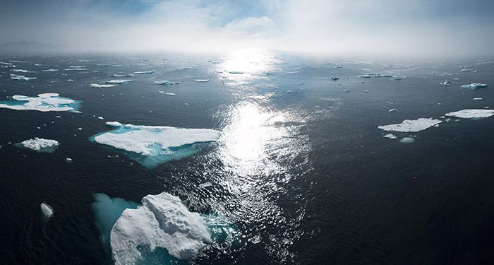 a photograph of ice floes floating in a blue sea