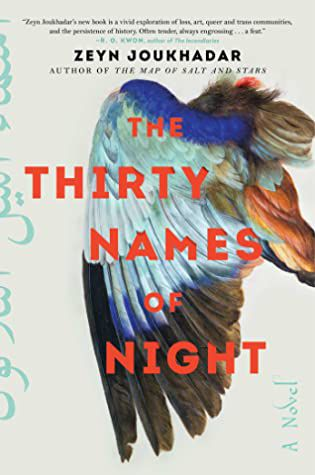 The Thirty Names of Night book cover