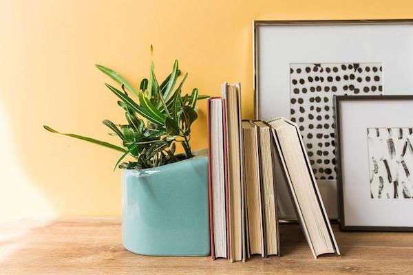 50 Unique Gifts For Book Lovers That Aren T Books Book Riot