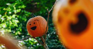 image of a smiling carved pumpkin https://unsplash.com/photos/80jPsacAjUs