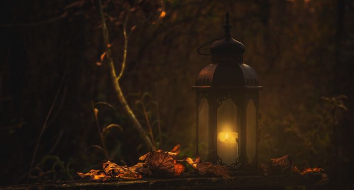 a lantern on a bed of dry leaves in a forest