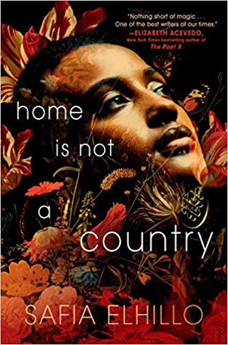 Home is Not a Country book cover