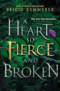 cover image of A Heart So Fierce and Broken by Brigid Kemmerer