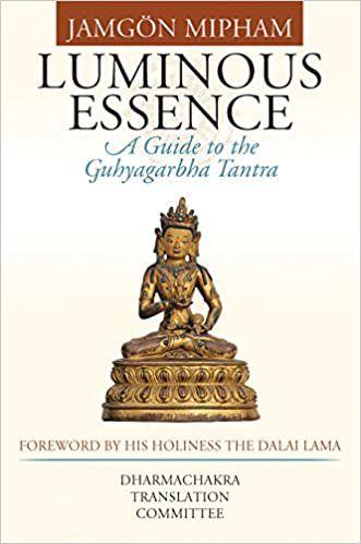 luminous essence book cover