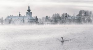 winter fantasy setting in Austria with swan gliding through water