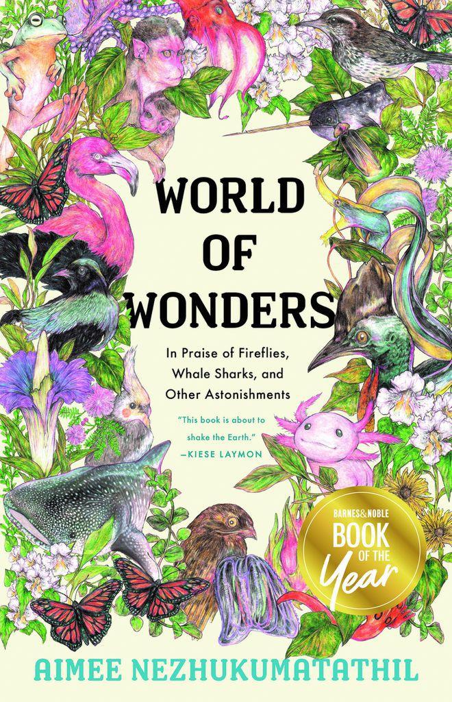 BOTY 2020 World of Wonders
