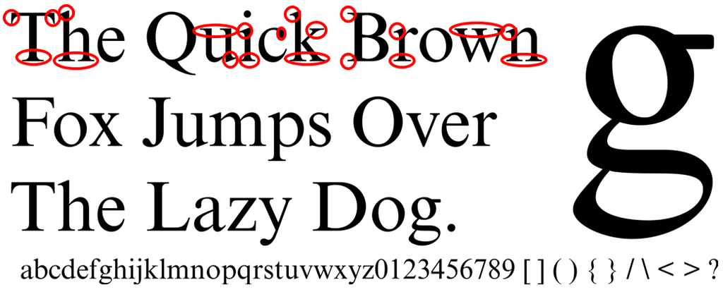 examples of Times New Roman font https://en.wikipedia.org/wiki/Serif#/media/File:Times_New_Roman_sample.svg