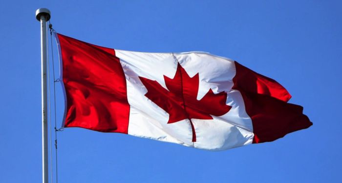 image of Canadian flag https://www.pexels.com/photo/flag-of-canada-2448946/