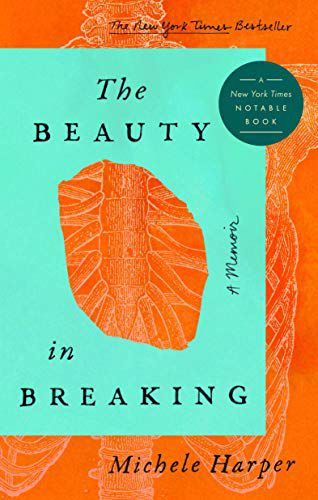 Capa de The Beauty in Breaking