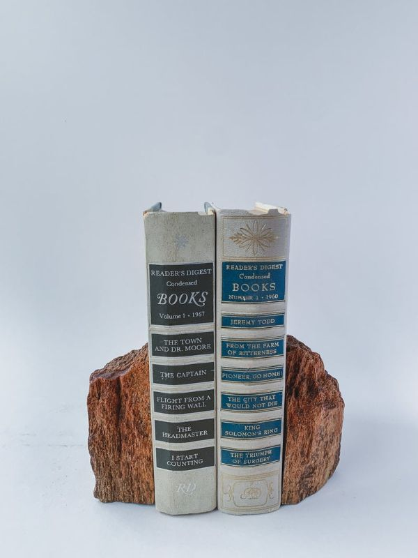 a piece of petrified wood split in two used as bookends