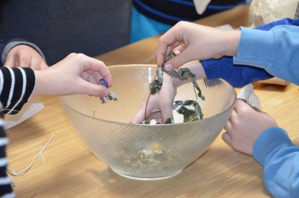 Small hands touching dried flowers in a clear bowl