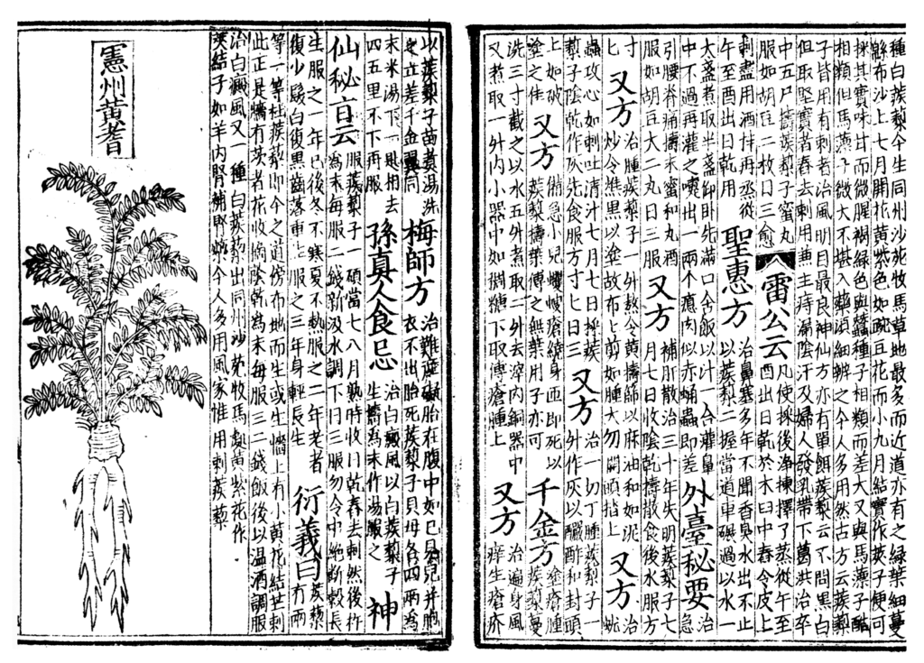 https://en.wikipedia.org/wiki/Woodblock_printing#/media/File:Pen_ts'ao,_woodblock_book_1249-ce.png