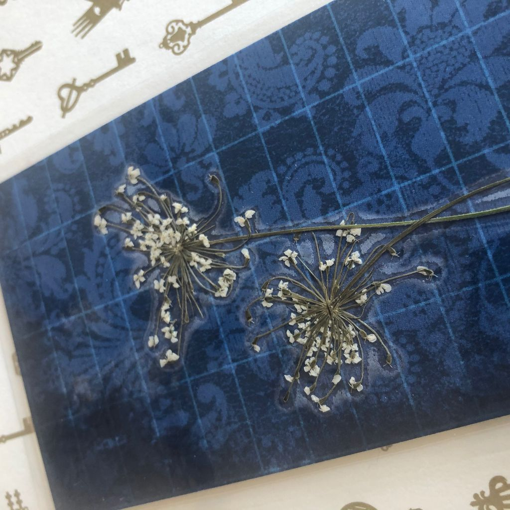 Close-up of pressed flower bookmark.  [photo by me]