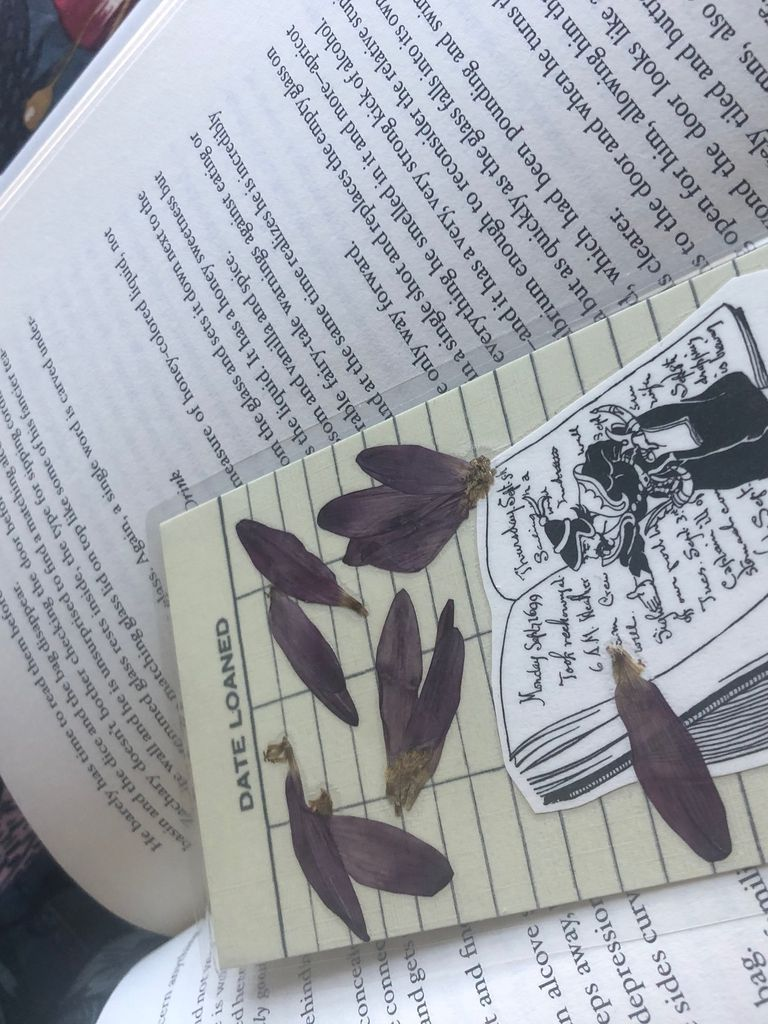 Pressed flower bookmark with scattered petals laying on a book.  [photo by me]
