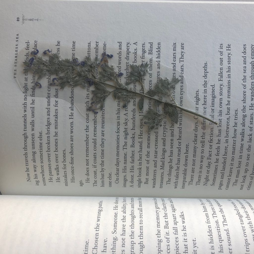 Pressed flower bookmark laying on book page.  [photo by me]