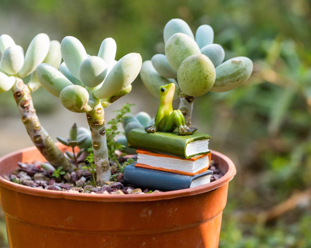 Miniature frog figurine sitting on a stack of resin books