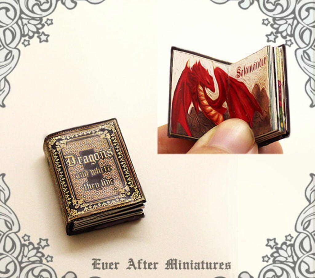 A tiny dragon encyclopedia