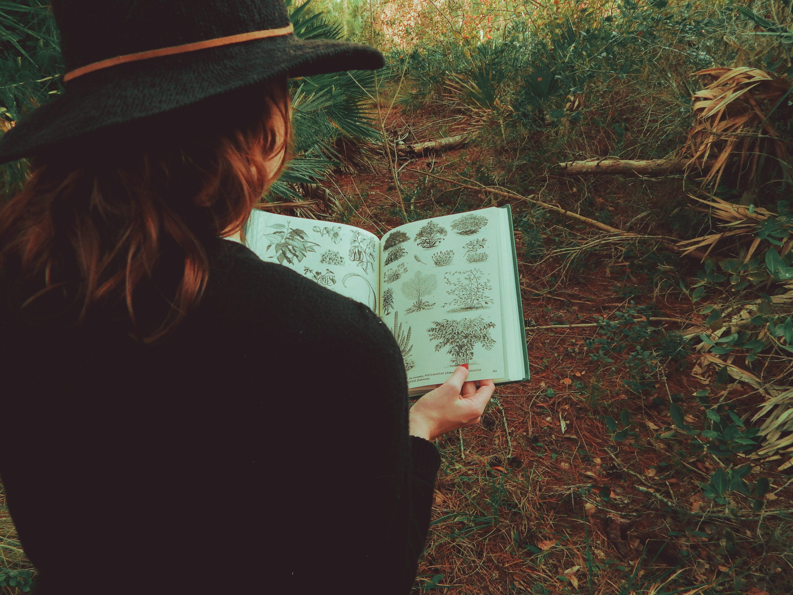 woman consulting nature guide on trail