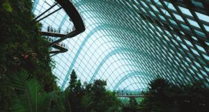 image of the Cloud Forest Bridge at Gardens by the Bay in Singapore https://unsplash.com/photos/BITrZ_FIjAQ