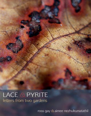 cover image of Lace & Pyrite: Letters from Two Gardens by Aimee Nezhukumatathil and Ross Gay