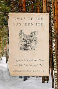 Owls of the Eastern Ice cover