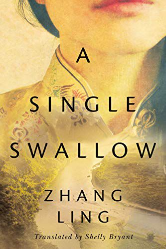 Book cover image of A Single Swallow