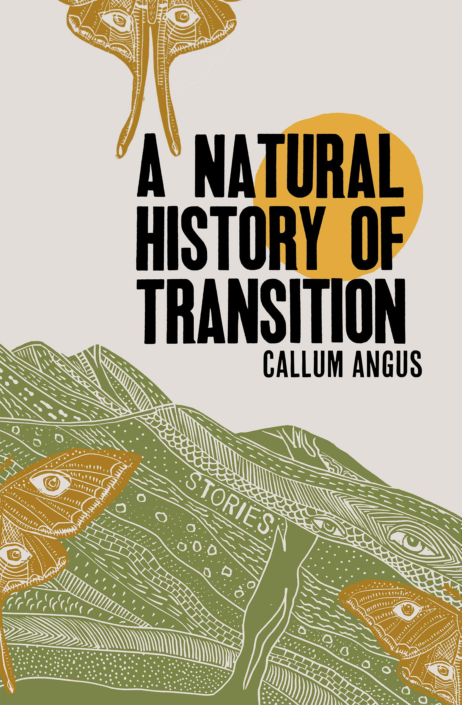 A Natural History of Transition by Callum Angus