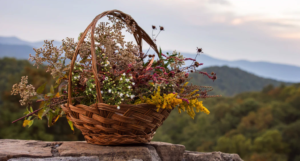 brown woven basket with flowers in it on a gray concrete wall against a backdrop of rolling green hills https://unsplash.com/photos/WLWHXZQHQoU