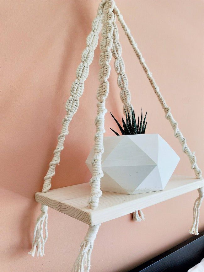 Hanging shelf with plant