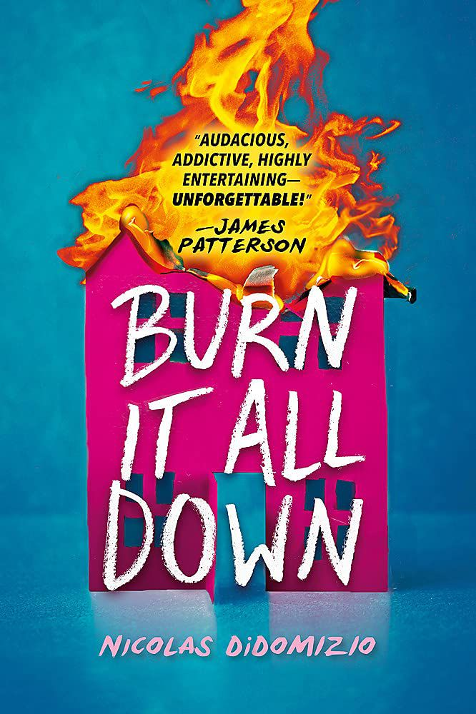 Burn It All Down book cover
