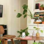 small empty apartment with plants and books