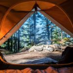 tent interior with open flap showing forest outside for camping