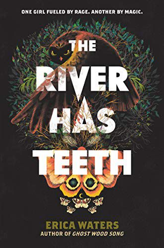 cover image of The River Has Teeth by Erica Waters
