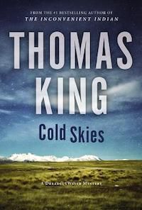 Cold Skies book cover