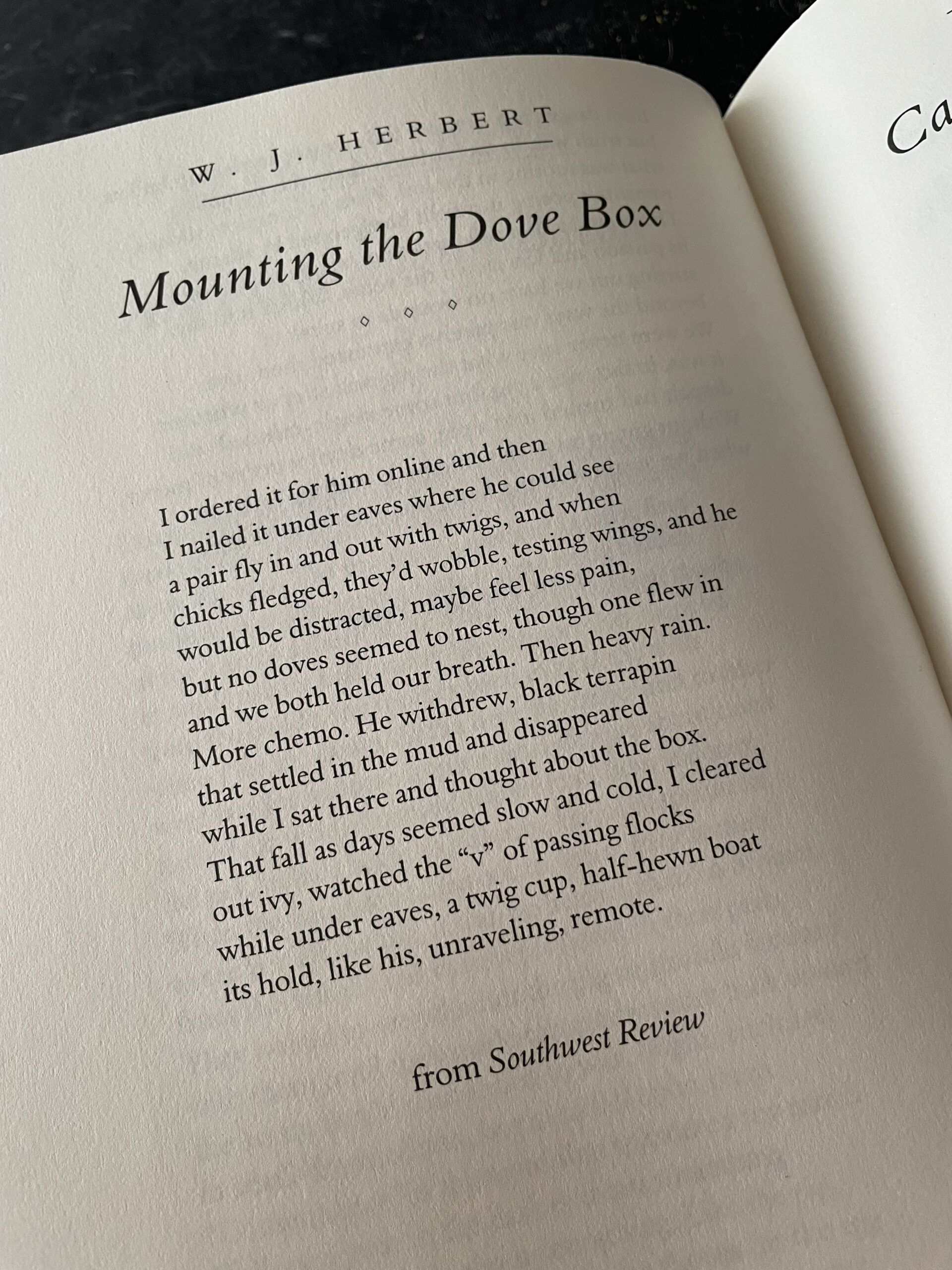 image of Mounting the Dove Box sonnet from WJ Herbert