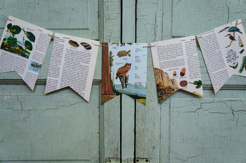 Image of book page banner.