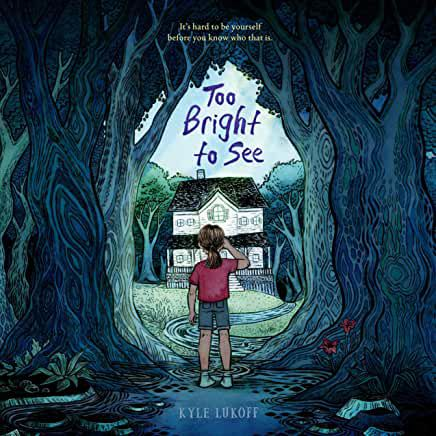 audiobook cover image of Too Bright to See by Kyle Lukoff