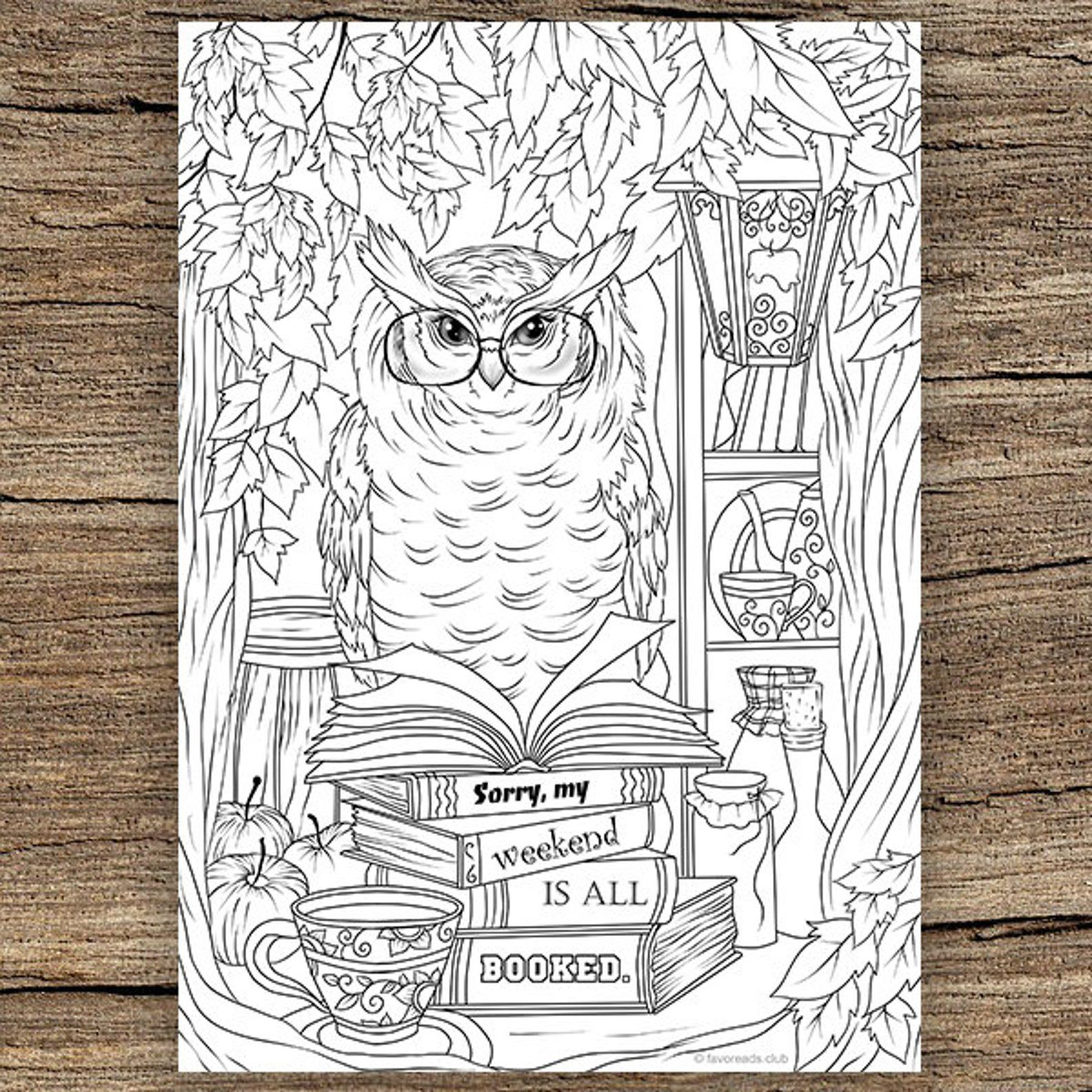 """coloring book design of an owl perched on a stack of books that say """"Sorry, my weekend is all booked"""""""