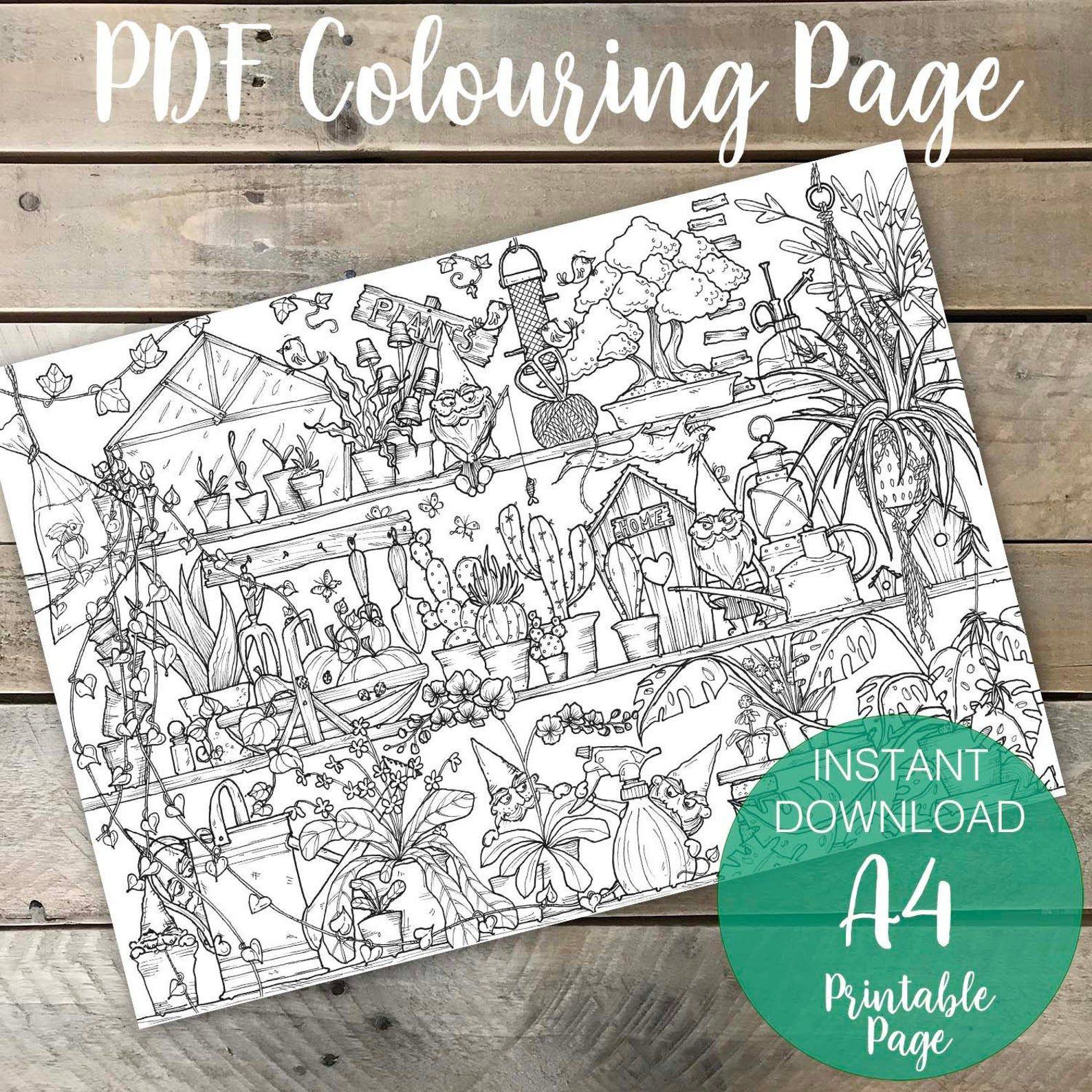 coloring book design of shelves of plants