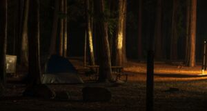 a tent in a mostly dark forest campsite https://unsplash.com/photos/oxkYQoXdL68