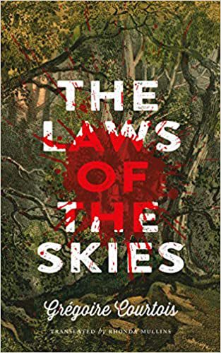 cover of the laws of the skies by Grégoire Courtois
