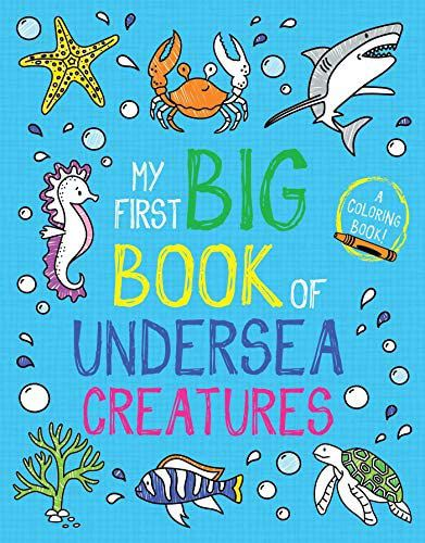 Cover image of My First Big Book of Undersea Creatures by Little Bee Woods, with illustrations of sea creatures around the title text